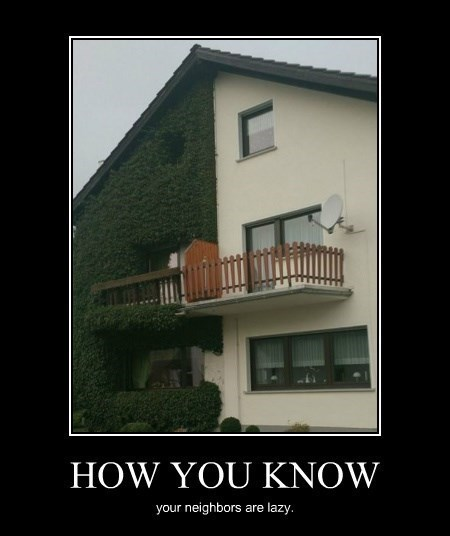 house funny idiots neighbors