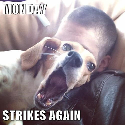 MONDAY STRIKES AGAIN