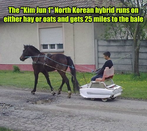 kim jong-un technology North Korea hacked horse