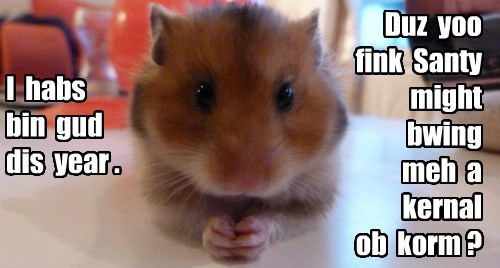 Hamsters Are So Greedy