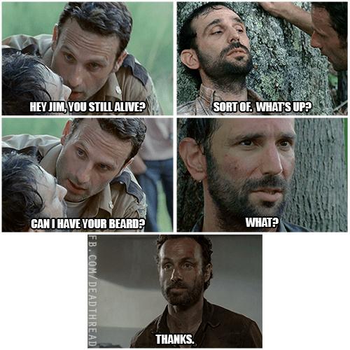 Rick Grimes beard transplant - 8396982528