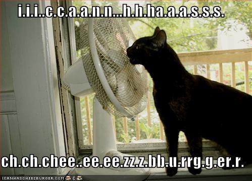 i.i.i..c.c.a.a.n.n...h.h.ha.a.a.s.s.s.  ch.ch.chee..ee.ee.zz.z.bb.u.rrg.g.er.r.