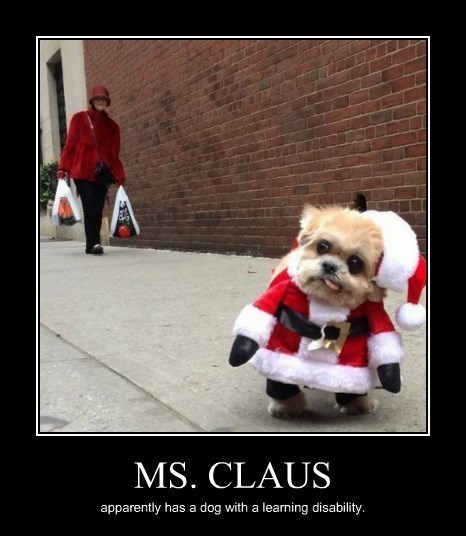 christmas dogs santa ms-claus - 8397059328