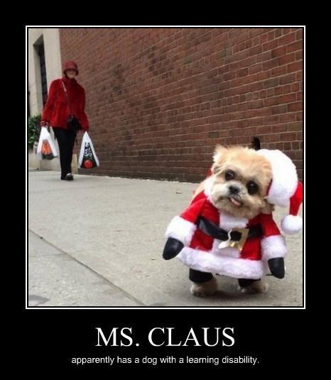 christmas dogs santa ms-claus - 8397059328