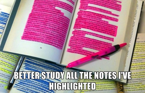exams,funny,studying,highlighter,wtf