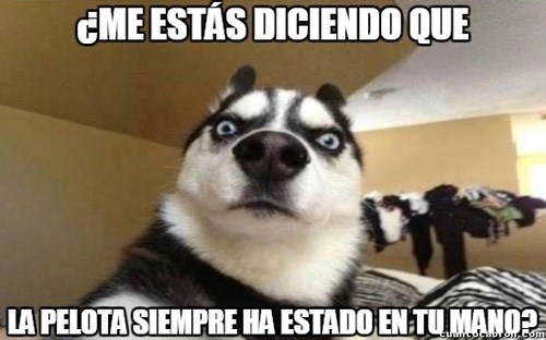 bromas perros Memes animales - 8397743360