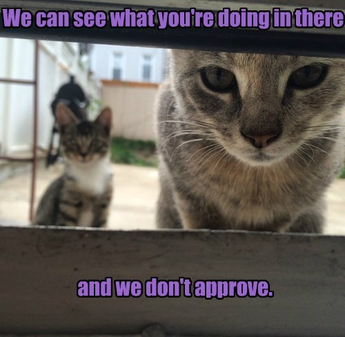 We can see what you're doing in there and we don't approve.
