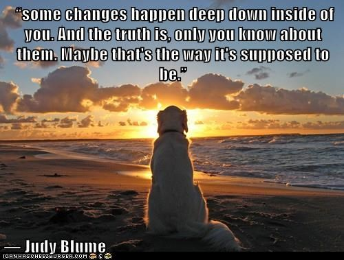 dogs,changes,inside,caption