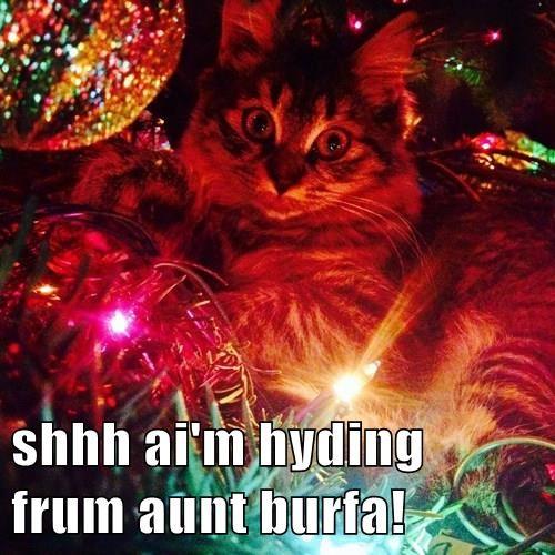 shhh ai'm hyding frum aunt burfa!