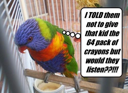 crayons,kids,parrot