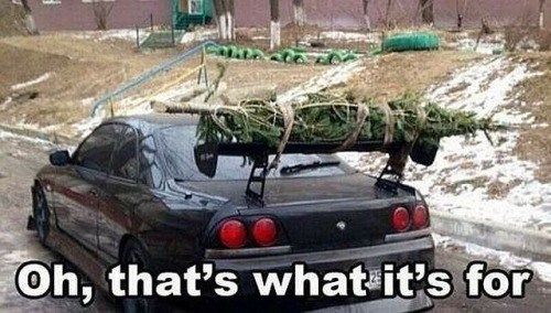 spoilers,christmas tree,cars,special delivery,g rated,win
