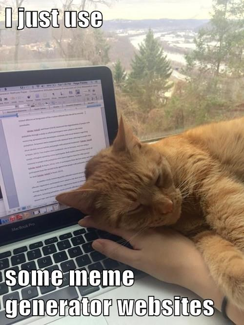 i just use some meme generator websites lolcats lol cat memes