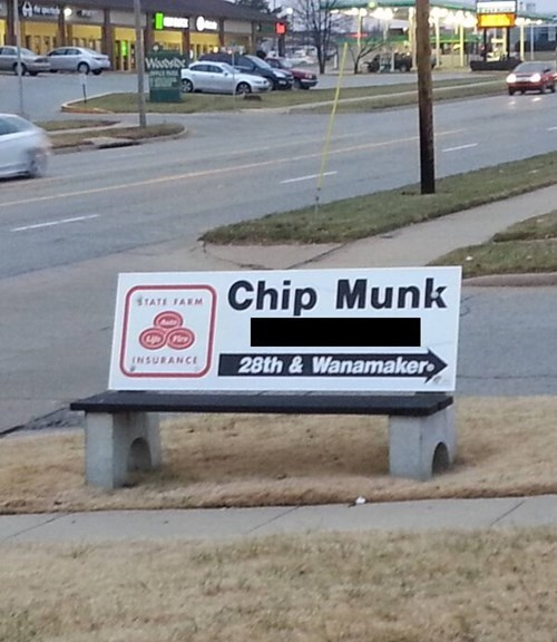 monday thru friday,advertisement,chipmunk,name,bench