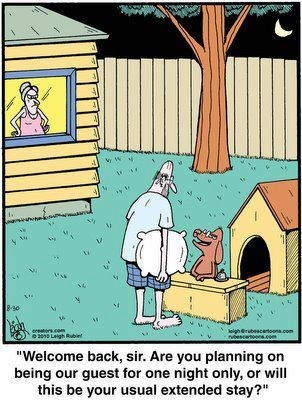 dogs marriage men dog house web comics - 8400182272