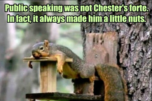 nuts,public speaking,squirrel