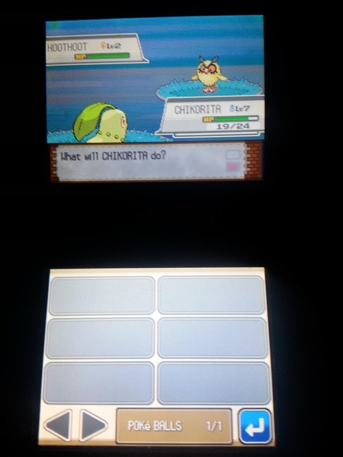 hoothoot Pokémon shinies - 8400391168