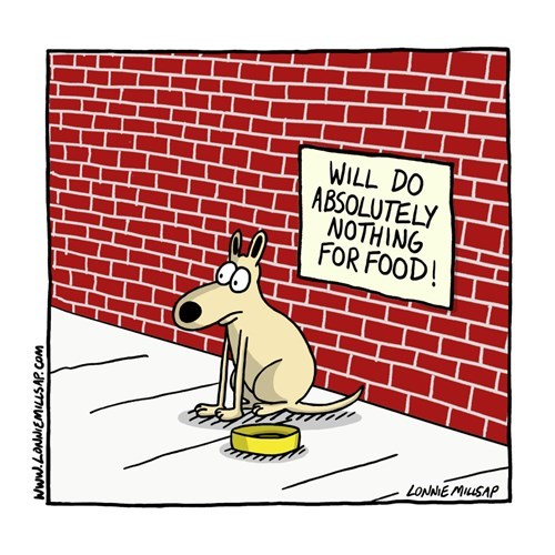 dogs work get a job web comics - 8400605184