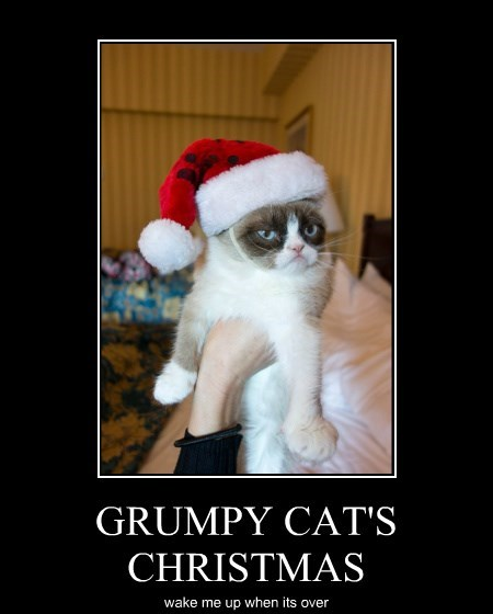 GRUMPY CAT'S CHRISTMAS wake me up when its over