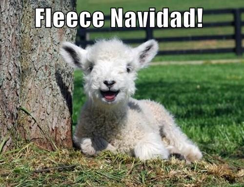 animals christmas baby animals puns sheep - 8400798464