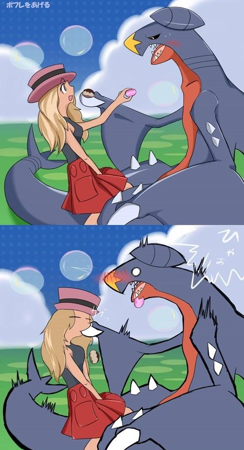 Pokémon garchomp pokemon-amie pokepuffs - 8401104128