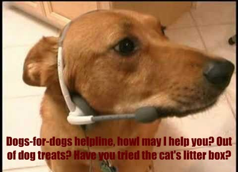 Dogs-for-dogs helpline, howl may I help you? Out of dog treats? Have you tried the cat's litter box?