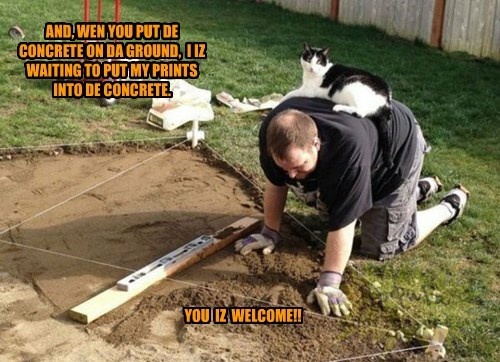 footprint jerk cement Cats - 8401943808