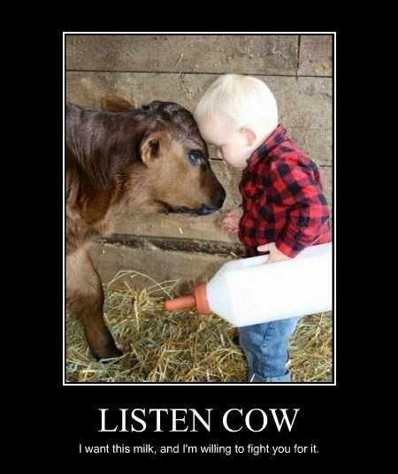 cow,kids,milk,fight,funny