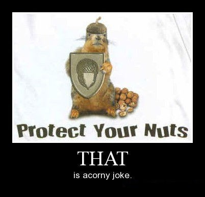 corny,funny,nuts,protection