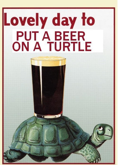 beer ads guinness turtle funny vintage - 8402616320
