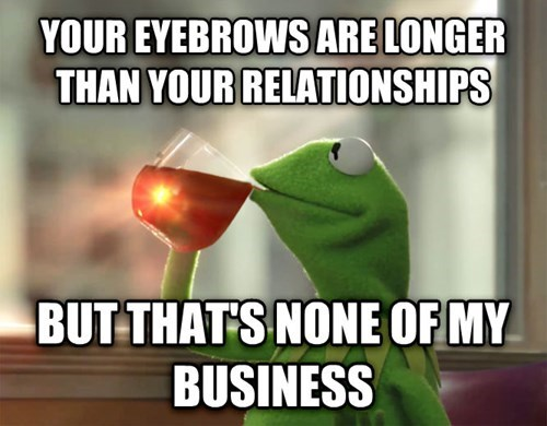 Photo caption - YOUR EYEBROWS ARE LONGER THAN YOUR RELATIONSHIPS BUT THAT'S NONE OF MY BUSINESS
