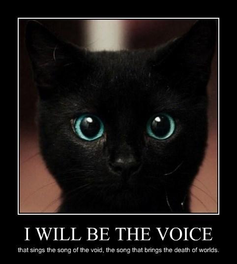 evil Cats funny - 8403378944