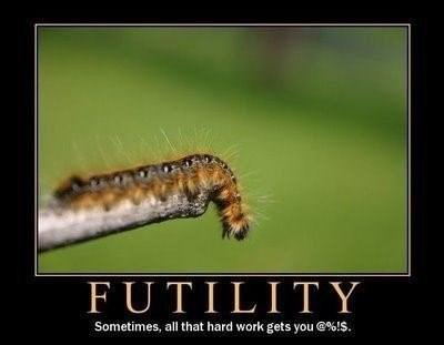 futility funny caterpillar - 8403379712