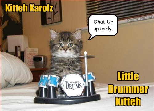 ohai,drums,Cats