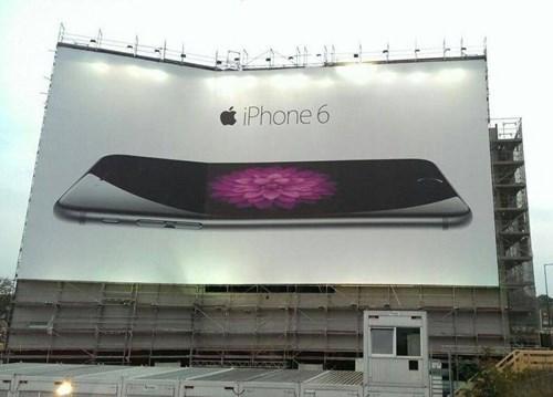Technology - iPhone 6