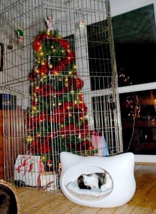 christmas christmas tree Cats - 8404231936