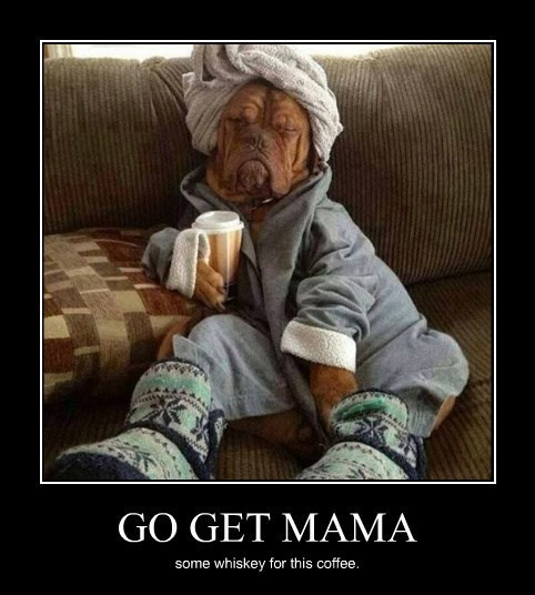 dogs funny mama whiskey - 8404360960