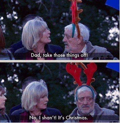 christmas,reindeer,wilf,companion