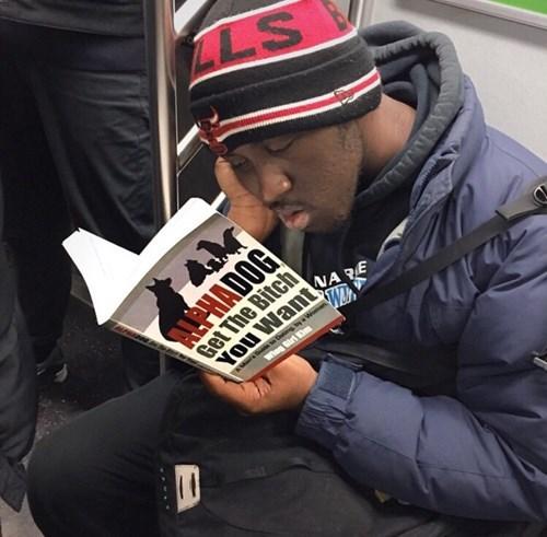 pua,reading,public transportation,books