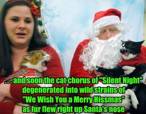 christmas fight santa Cats - 8404687360