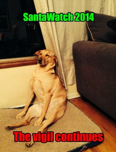 christmas dogs labrador santa - 8404690432
