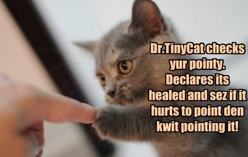 kitten Cats dr tinycat - 8405051392