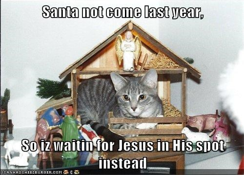 Santa not come last year, So iz waitin for Jesus in His spot instead
