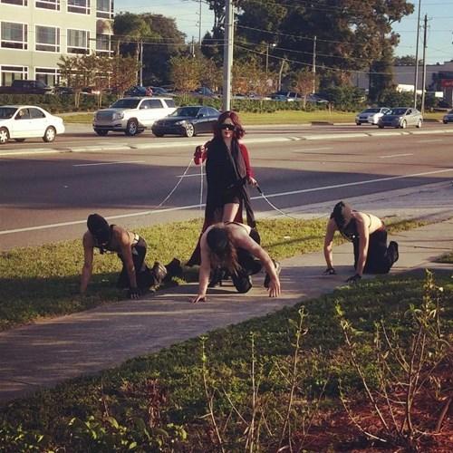 dogs,men,walk,dominatrix,funny