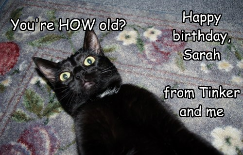Happy birthday,  Sarah  from Tinker and me