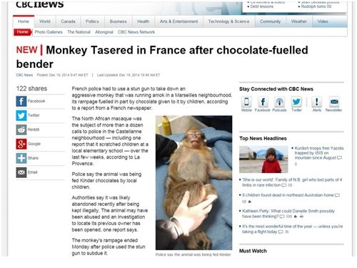 news,headline,Probably bad News,monkey