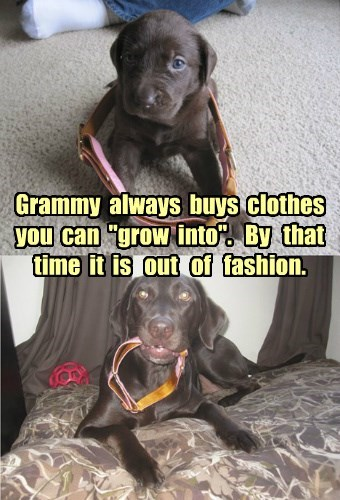 "Grammy always buys clothes you can ""grow into"". By that time it is out of fashion."