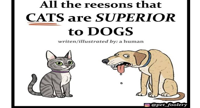 dogs funny comic instagram comics Cats funny - 8407045