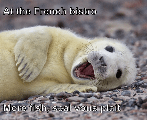 animals french seal puns - 8407220736