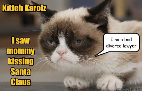 Grumpy Cat Cats - 8407532288
