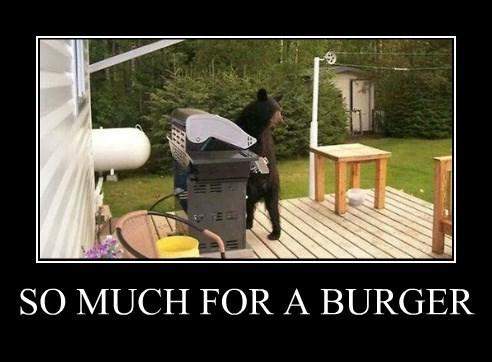 Cheezburger Image 8407763456